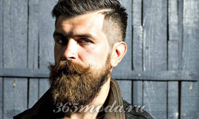 Модная мужская борода 2018