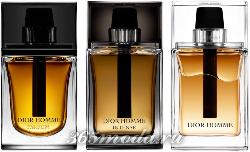 мускусные женские ароматы