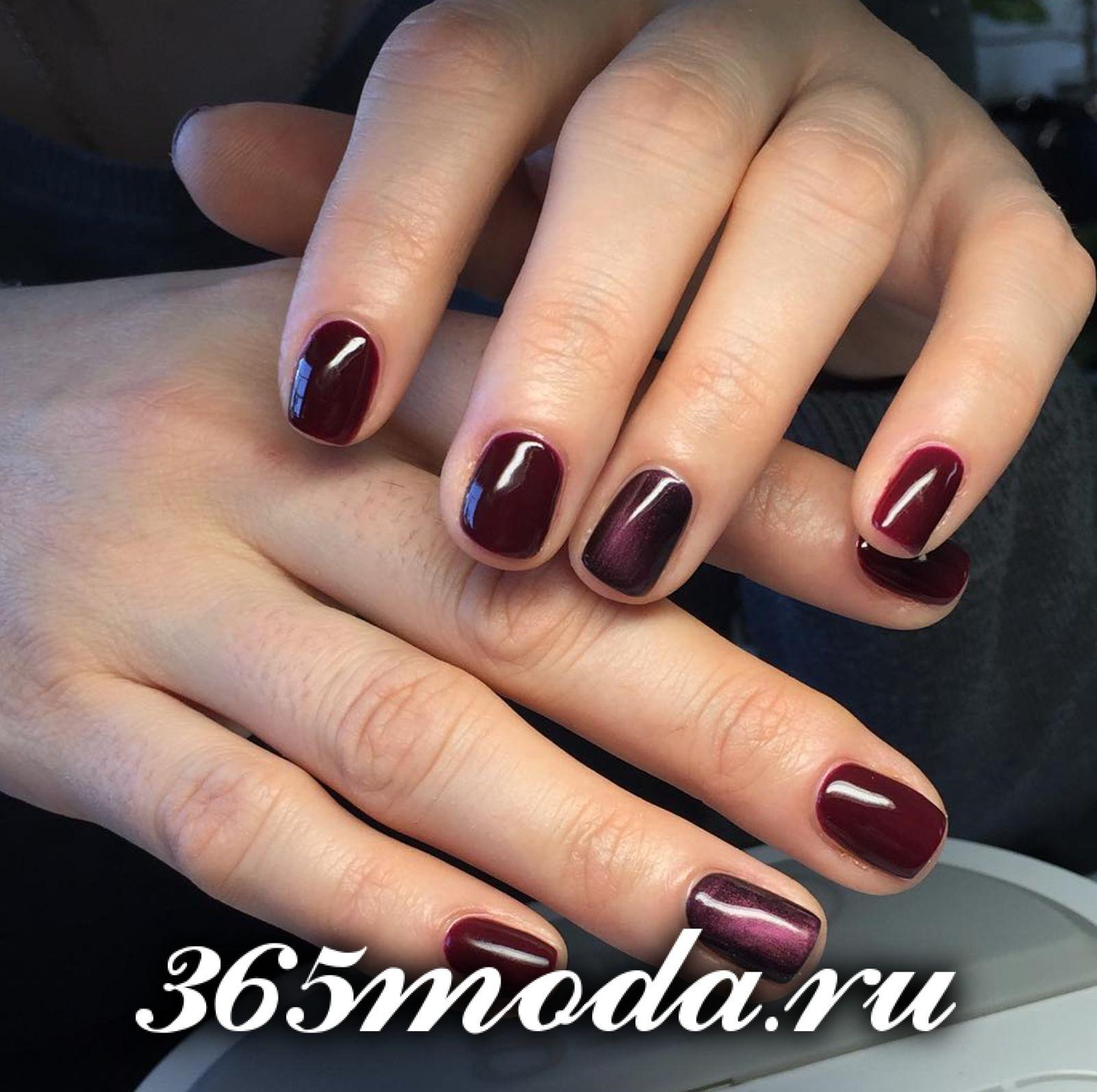 ZimniyManicur (67)