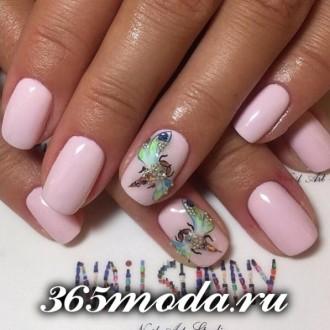 nails foto 2017 (17)