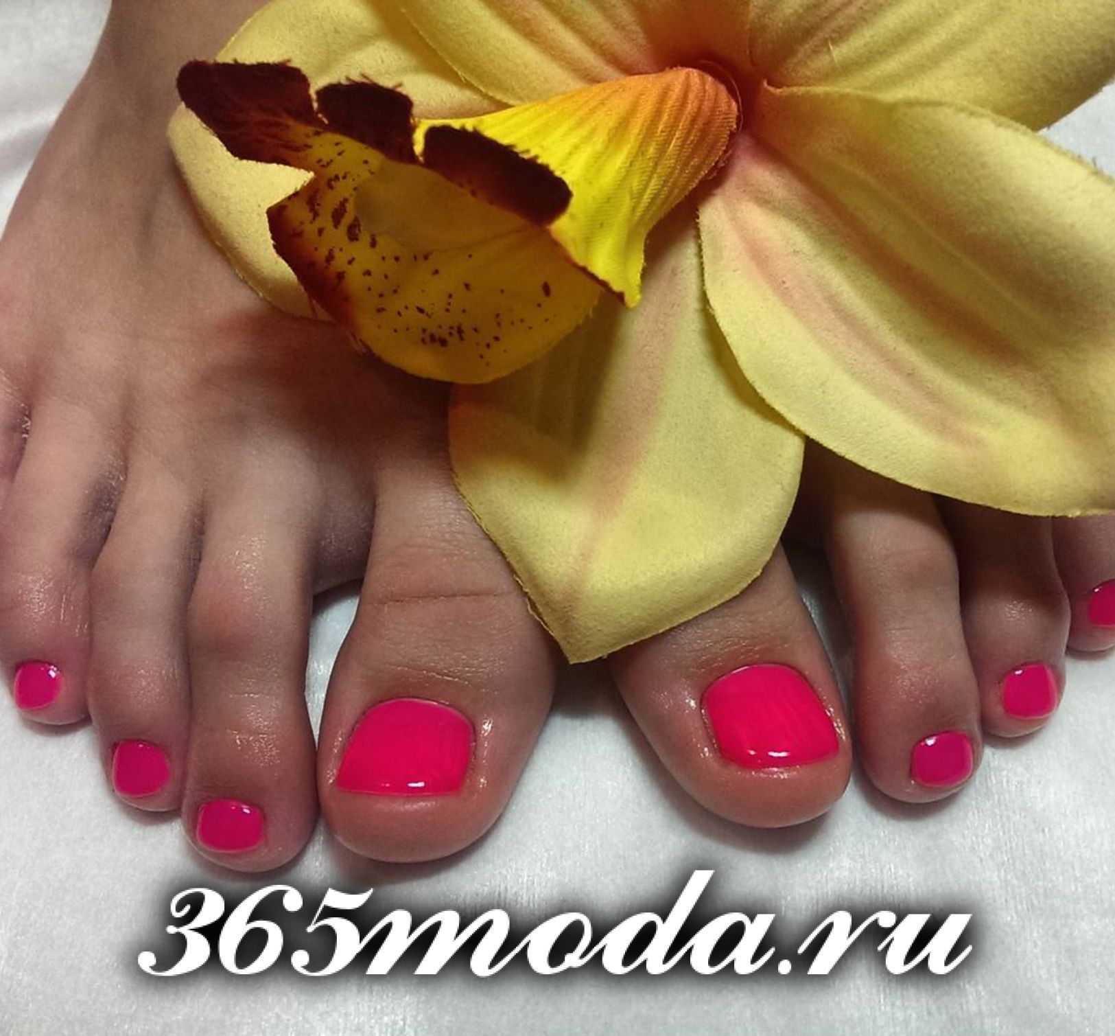 pedicur (21)