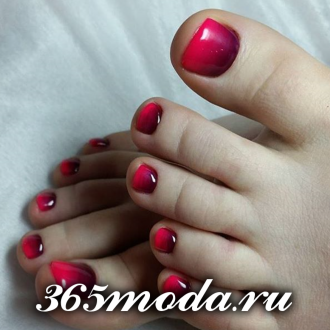 pedicur (60)
