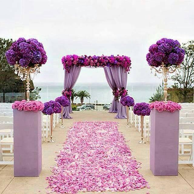модная фиолетовая свадьба