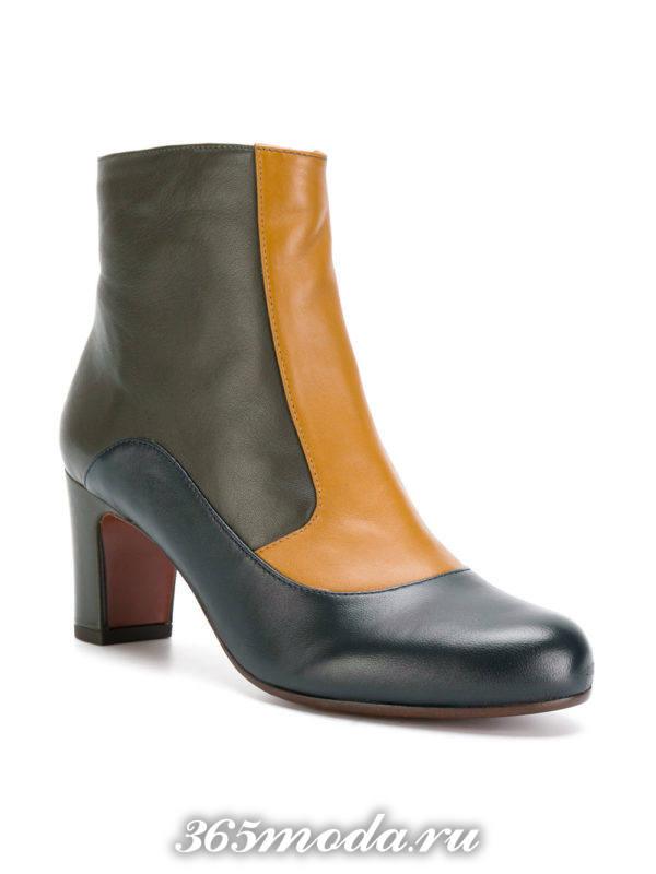 ботильоны: модные кожаные комбинированные на средних каблуках